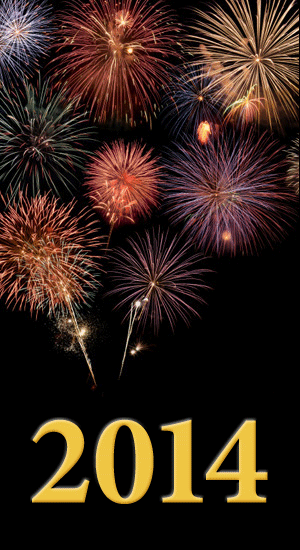 Fireworks - 2014